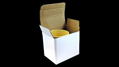 Image for CARDBOARD BOX WITHOUT WINDOW