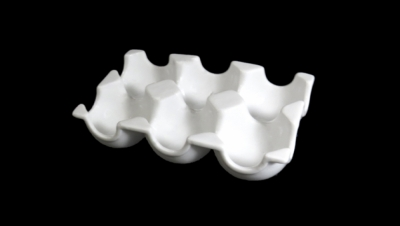 Image for EGG TRAY