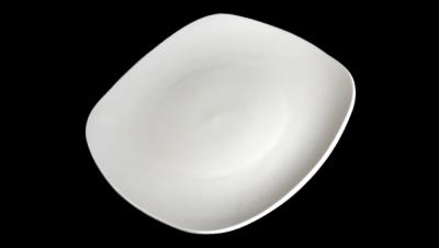 Image for SQUARE SHAPED DISH WANG